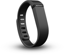 /images/2013-09-12/fitbit.png